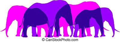 éléphant, troupeau, illustration