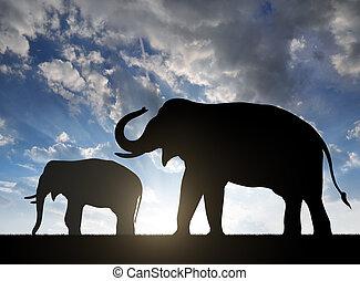 éléphants, silhouette