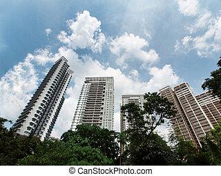 élévation élevée, condominium, luxueux
