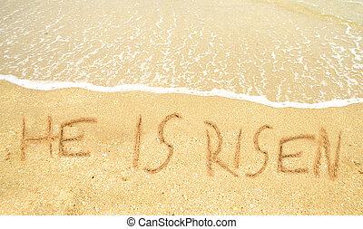 él, es, levantado, escrito, en la arena, para, pascua