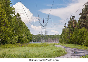 électricité, transmission, forêt, pylône