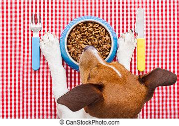 élelmiszer, tál, kutya
