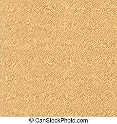 élevé, cuir,  résolution,  beige