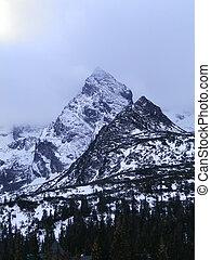élevé, montagne, neige