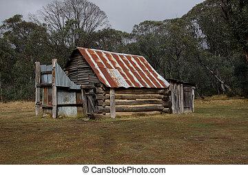 élevé, pays, australien, hutte, stockmans