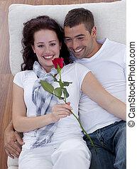 élevé, rose, amants, angle, sofa