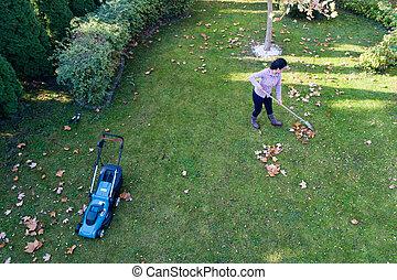 émondage, femme, feuilles, pelouse, ratisser