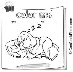 én, szín, alszik hím, worksheet