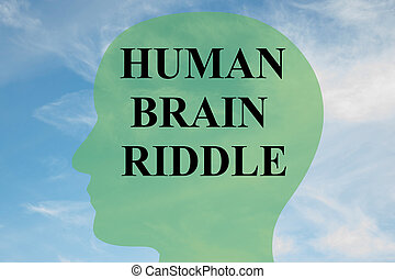 énigme, cerveau, concept, humain