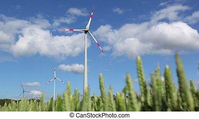 éolienne, champ, blé