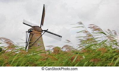 éolienne, kinderdijk, vieux, hollande