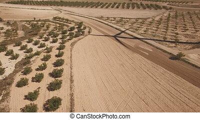 éolienne, ombre, terre, sur, cultivé