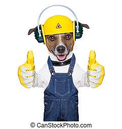 építés alatt, kutya