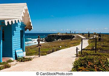 épület, és, panoráma, képben látható, punta, sur, isla mujeres, mexikó, yucata