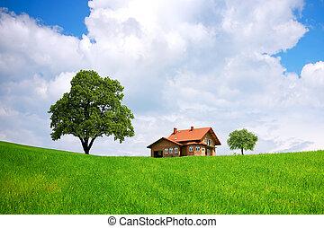 épület, és, zöld terep