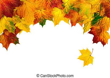 épület, ősz kilépő, határ, bow-shaped