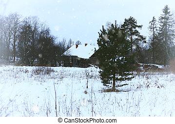 épület, alatt, ország, vidéki, tél