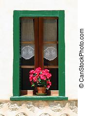 épület, fal, edény, virág, ablak