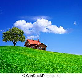 épület, képben látható, zöld terep