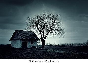 épület, kísértetjárta