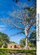 épület, trinidad, destiladeros, szanatórium, valle, ellen-, ...