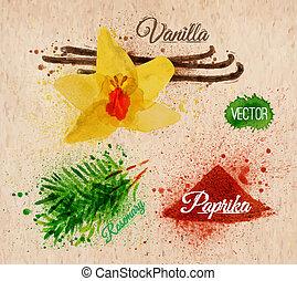 épices, herbes, aquarelle, vanille, romarin, paprika, kraft