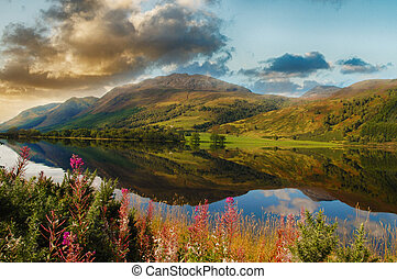 épico, panorâmico, loch, em, a, escocês, highlands., bonito, paisagem, de, escócia, com, montanhas, flores, e, um, loch, com, água, reflexões