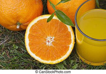 équilibré, orange, santé, jus, régime