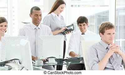 équipe bureau, fonctionnement, business