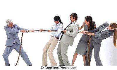 équipe, leur, business, contre, jouer, patron, tirer-de-la guerre