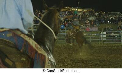 équitation, cheval, agressively, homme