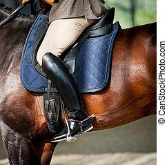 équitation, cheval, détail