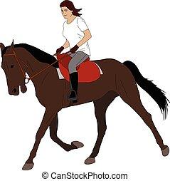 équitation, cheval, femme, 3