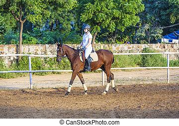 équitation, cheval, femme, parcour, elle