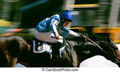 équitation, cheval, piste