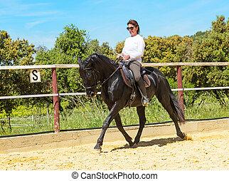 équitation, femme, étalon
