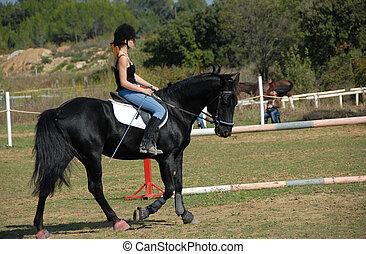 équitation, femme, jeune