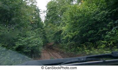 équitation, forêt, route