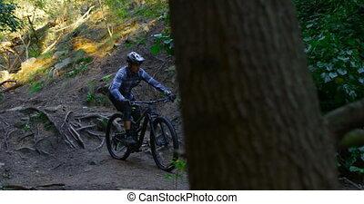 équitation, forêt, vélo, homme, 4k