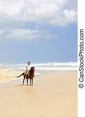 équitation, girl, plage, cheval