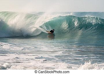 équitation, tube, vague, bodyboard, surfeur
