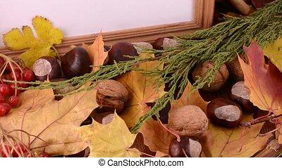 érable, gland, espace, bois, photo, écrou, pin, viburnum, automne, texture, fond, feuilles, cône, copie, cadre, vide