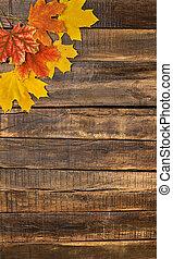érable, table, feuilles, automne, bois