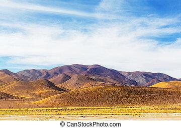 északi, argentína