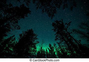 északi fény, alatt, svédország