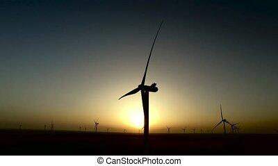 été, aérien, coloré, champs, travail, turbines, silhouette., enquête, pendant, blé, vent, sunset.