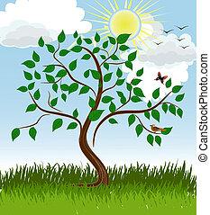 été, arbre