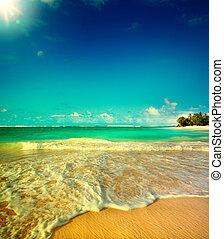 été, art, vacances plage, océan