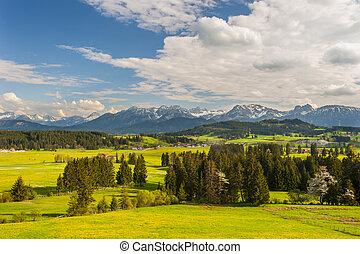 été, beau, panoramique, bavière, paysage