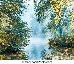 été, bord, lac, matin
